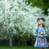 Яблоневый сад :: Мария Ефремкина