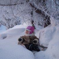 Морозко №2 :: Алиса *****