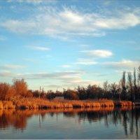 Соленое озеро :: Татьяна Пальчикова
