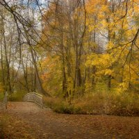 Осенняя краса... :: Наталья