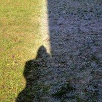 свет и тень (мороз и солнце) :: Сергей Короленко