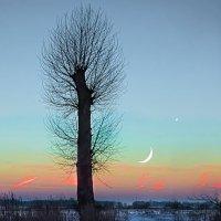 Месячный вечер. :: Валерий Изотов