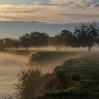 Рассвет на реке :: Лариса Березуцкая