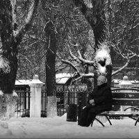 Ожидание! :: Владимир Шошин