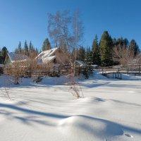 Великолепными коврами, блестя на солнце снег лежит :: Анатолий Иргл
