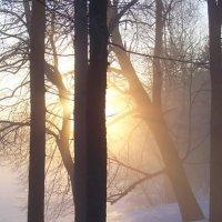 Мороз и солнце... :: Miko Baltiyskiy