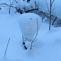 Зимняя шапочка :: Валюша Черкасова