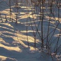 Зима :: Валюша Черкасова
