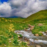Июнь в горах :: santamoroz