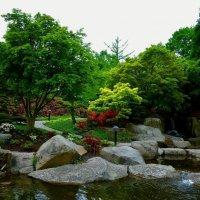 Парк цветов (серия). Японский сад :: Nina Yudicheva