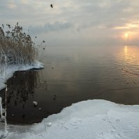 Зимняя сказка :: Юрий Клишин