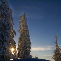 Солнце садится... :: Галина Ильясова