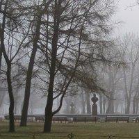 туманное утро в Александровском Саду :: Елена