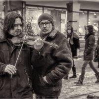 Музыканты. :: Андрей Козлов