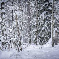 Зимняя сказка на Оленьих ручьях :: Pavel Kravchenko