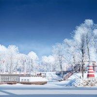 зимой у реки :: Valdis Veinbergs