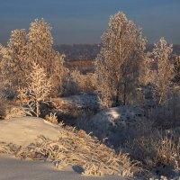 Зимняя,почти вечерняя фото-зарисовка :: Александр Попов