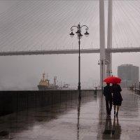 Дождливый вечер и всё как обычно. :: Дмитрий Иванов