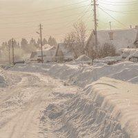 солнце в зените.февраль. :: petyxov петухов