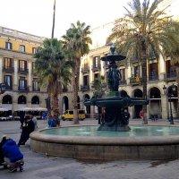 Зима в Барселоне. :: Елена