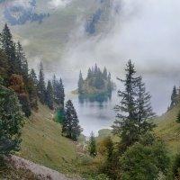 туман он может быть стеной, своеобразной пеленой... :: Elena Wymann