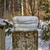 Гамбургер из снега. :: Анатолий. Chesnavik.