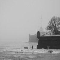 Туман туманом, а купание по расписанию.. :: tipchik