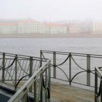 вид на Университетскую набережную туманным утром :: Елена