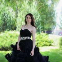 Чёрный лебедь :: Анна Коваль-Савилова