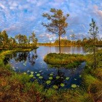 На островке, или северное лето. :: Фёдор. Лашков