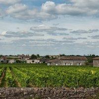 Сент-Эмильон. В окружении виноградников. :: Надежда Лаптева