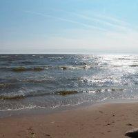 Летний день на заливе :: Регина Пупач