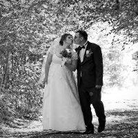 Поцелуй. Летние свадьбы :: Константин Антошкин