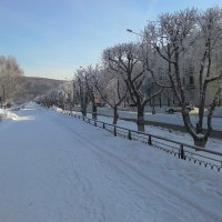 Мороз не для прогулок по аллеям :: Владимир Звягин
