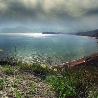 искорка солнца на весеннем берегу :: viton