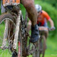 Велосипед :: Андрей Бондаренко