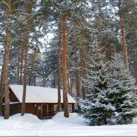 Лыжная база :: Vlad - Mir