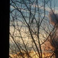 Мои закаты :: Татьяна Юрасова