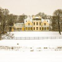 Зима в парке :: Петр