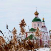 Ильинский храм Суздале :: Елена Малкова