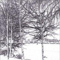Зима.Снег. Одинокая скамейка... :: Михаил Попов