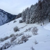 Тишина, морозный воздух, снег хрустит под ногами ... :: Anna Gornostayeva