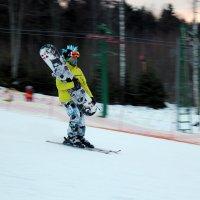 Стильный лыжник :: Кристина Волошина