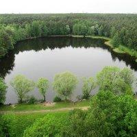 Озеро в лесу :: Александр Михайлов