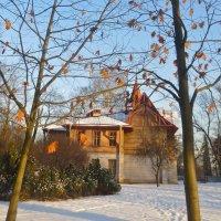 дубовые листья февраля :: Елена