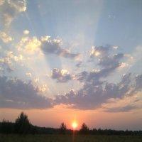 За горизонт спускалось солнце... :: Вера (makivera)