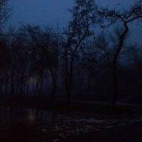 Восход луны :: Анатолий Шулков