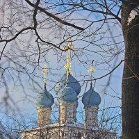 Коломенское  зимой. :: Виталий Селиванов