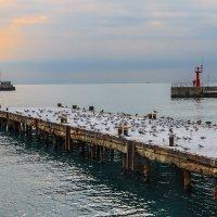Зимнее утро :: Юрий Яловенко
