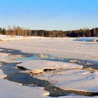 Изменчивый месяц февраль.... :: Павлова Татьяна Павлова